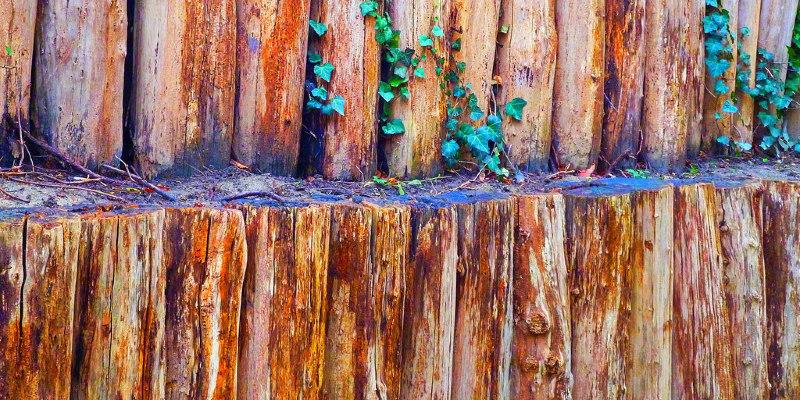 Wood Floor Care: Polish Your Skills